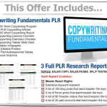 Copywriting Essentials PLR Bundle