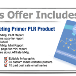 Affiliate Marketing Primer PLR Special Bundle