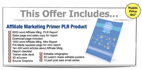 Affiliate Marketing Primer PLR