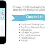 Working From Home Guide PLR Special