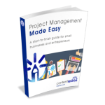 Project Management Made Easy PLR