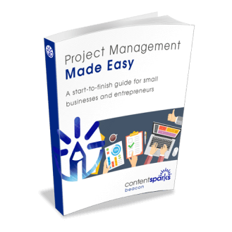 Project Management PLR