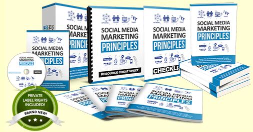 Social Media Principles PLR